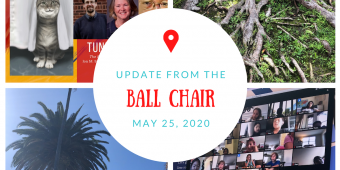 Rooted: Lisa's Update from the Ball Chair for 5/25/20